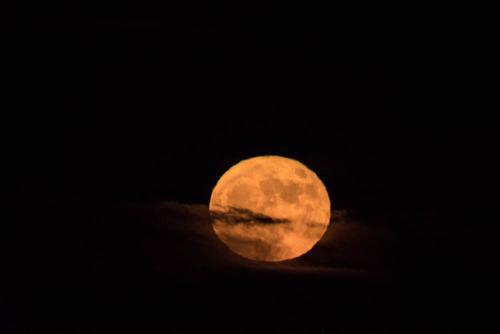 Moon-5