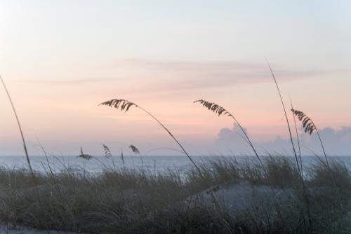 Beach-42
