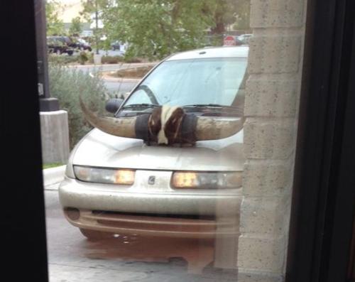 Texas drive-thru