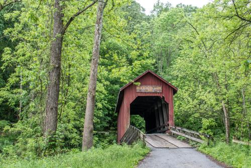 Bridge-14