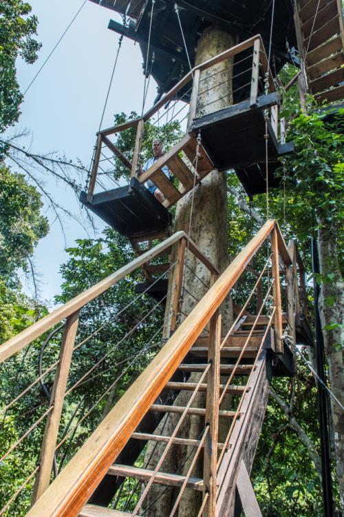Treehouse-172