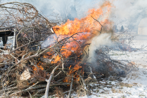 Burn-13