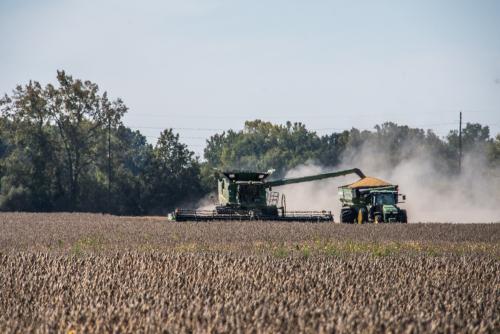 Harvest-4