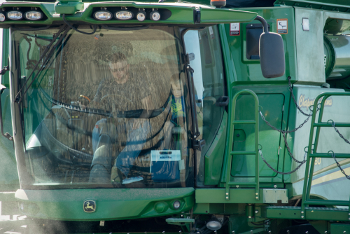 Harvest-11