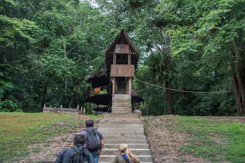 Treehouse-44