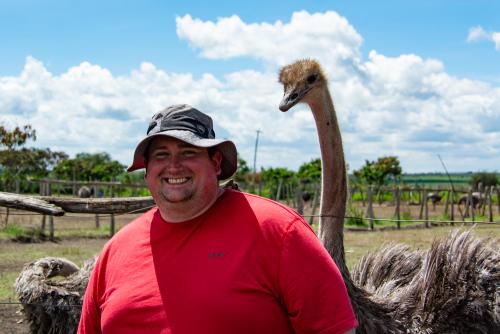 Ostrich-23