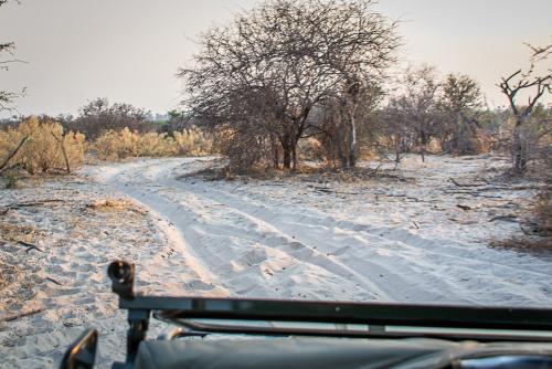 Kalaharisand-2