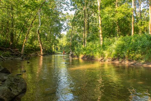 Creek-55