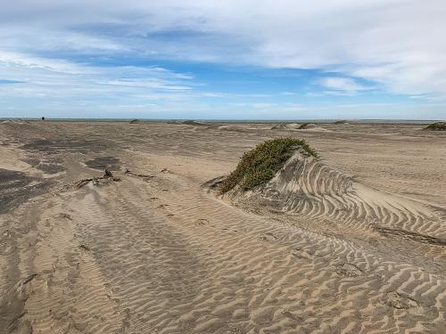 Sand-19