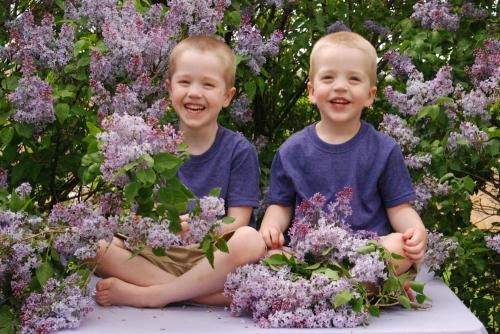 LilacsKids-94