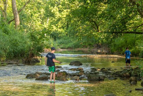 Creek-84