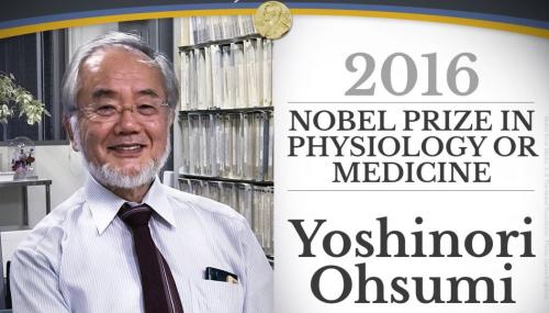 Autophagy Nobel Prize