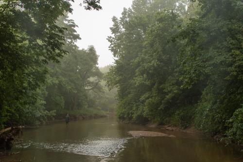 Creek-7