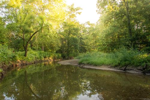Creek-47