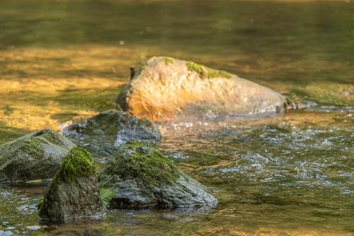 Creek-65