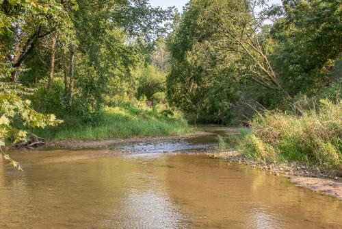 Creek-86