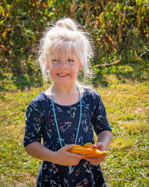 Pumpkin-67