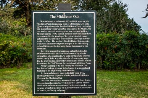 Middltn-66