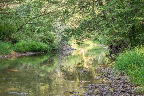Creek-58