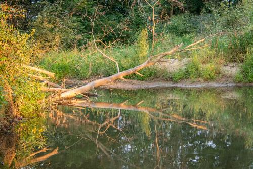Creek-24