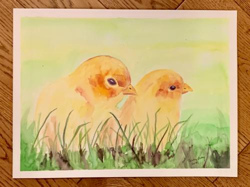 Chicks april 2021
