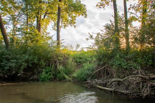 Creek-12