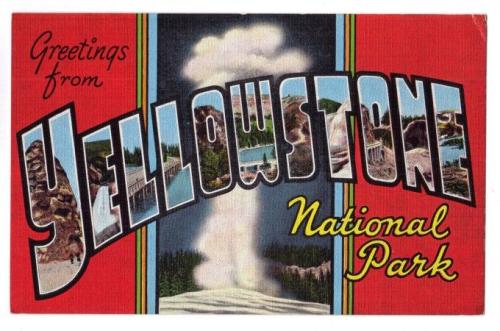 Yellowstone postcard