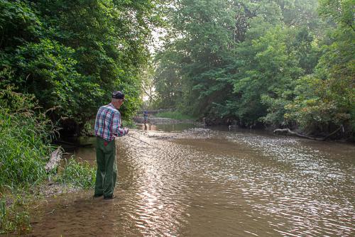 Creek-6