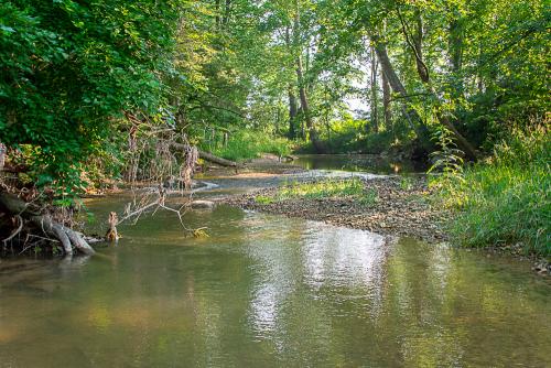 Creek-51