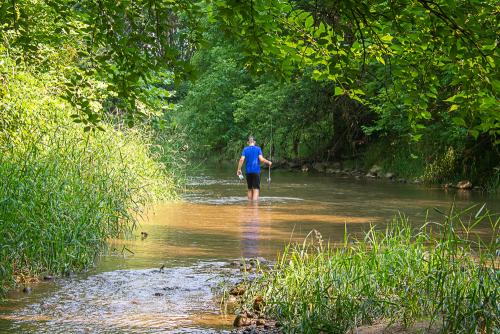 Creek-90