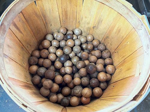 Macadamianutco-3