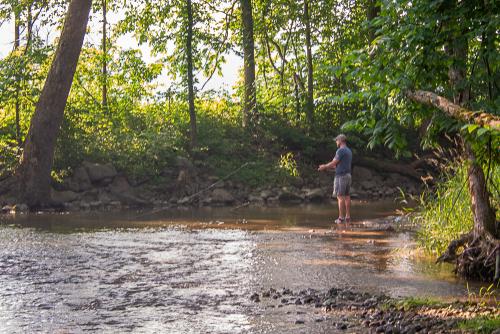 Creek-66