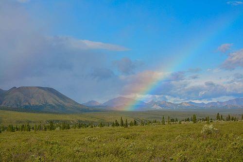Denali Rainbow