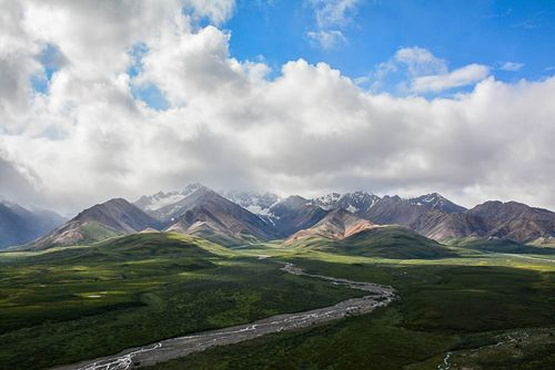 Denali Overlook