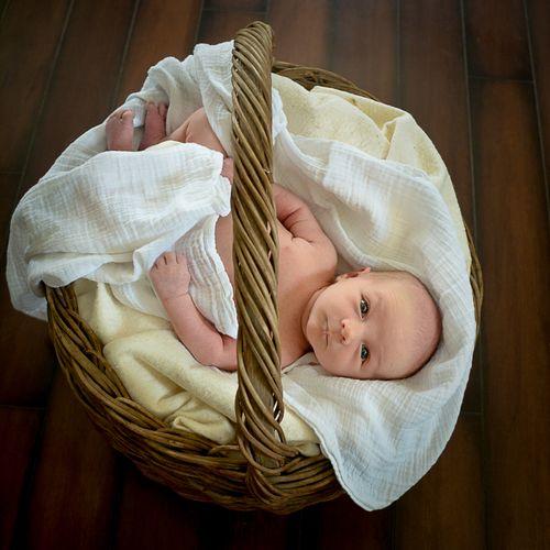 Basket Full of Krew
